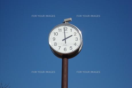 公園の時計塔 の写真素材 [FYI00125852]