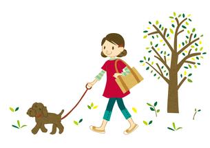 犬と散歩する若い女性の写真素材 [FYI00125950]