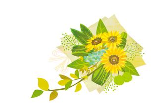 ひまわりの花束の写真素材 [FYI00125951]