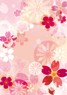 桜イメージ2の写真素材 [FYI00126042]