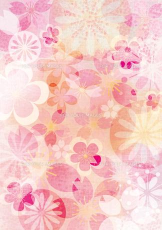 桜イメージ1の素材 [FYI00126043]