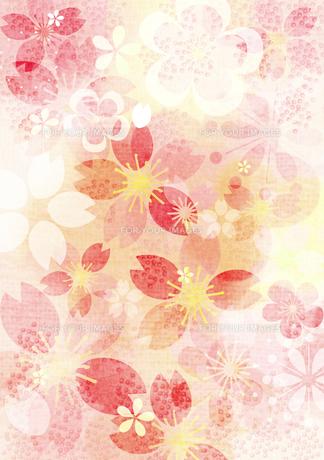 桜イメージ3の素材 [FYI00126081]
