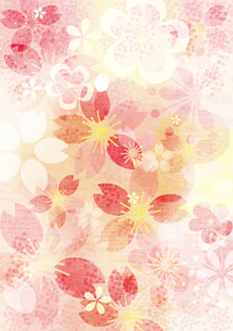桜イメージ3の写真素材 [FYI00126081]