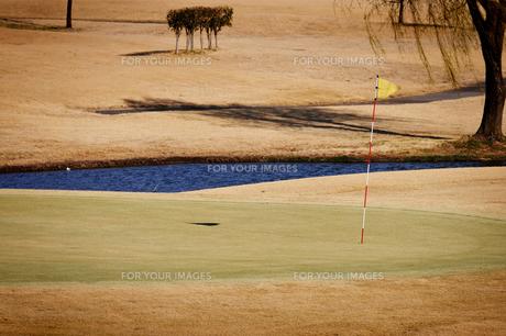 ゴルフ場のグリーンの写真素材 [FYI00126132]