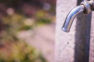 蛇口・水滴の写真素材 [FYI00126144]