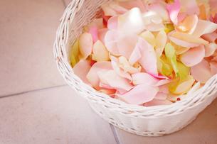 フラワーシャワーの花びらの写真素材 [FYI00126155]