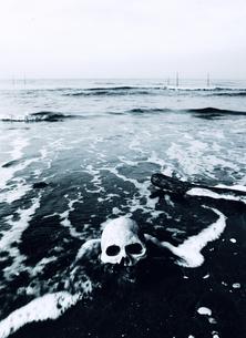 ドクロと海の写真素材 [FYI00126340]