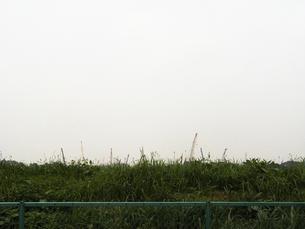 クレーンと雑草の写真素材 [FYI00126354]