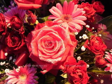 ピンクの花束の素材 [FYI00126506]