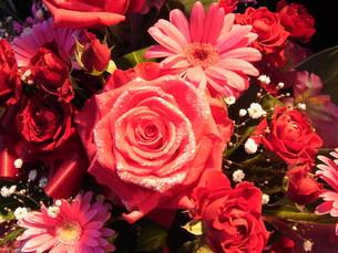 ピンクの花束の写真素材 [FYI00126506]