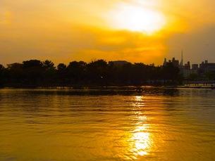 福岡、大濠公園の夕焼けの写真素材 [FYI00126681]