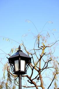 倉敷の美観地区の街並み 15の写真素材 [FYI00127210]