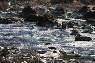 四万十川の清流の写真素材 [FYI00127378]