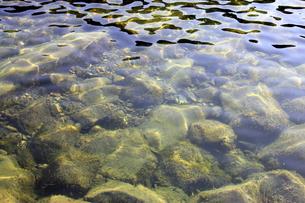 四万十川の清流 4の写真素材 [FYI00127380]