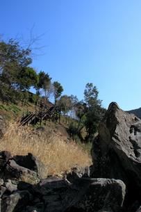 四万十川の岩 2の写真素材 [FYI00127405]