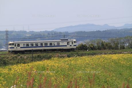 田舎の電車の写真素材 [FYI00127721]