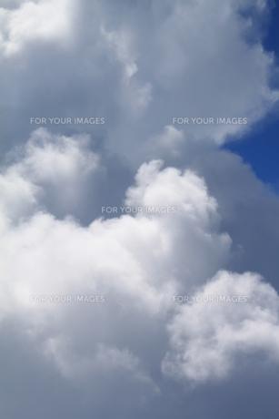 雲海の素材 [FYI00127727]