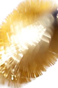 金ブラシの写真素材 [FYI00127964]