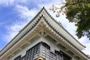 岐阜城の写真素材 [FYI00128032]