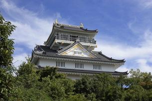 岐阜城の写真素材 [FYI00128041]