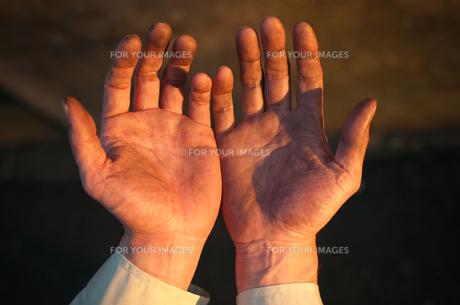 労働者の手の写真素材 [FYI00128166]