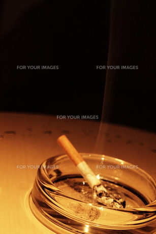 灰皿とタバコの写真素材 [FYI00128400]