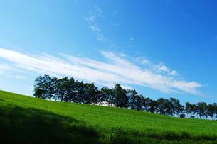 夏空と札幌の牧草地.の素材 [FYI00128426]