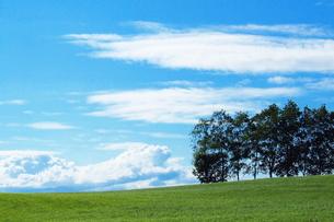 夏空と札幌の牧草地の素材 [FYI00128438]