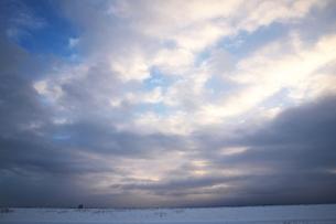 冬の北海道の草原の素材 [FYI00128442]