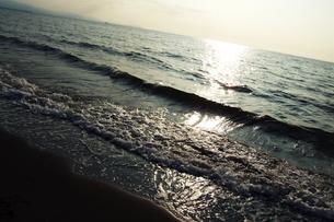 海辺の素材 [FYI00128447]