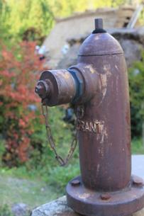 消火栓の写真素材 [FYI00128636]