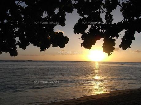 夕日の写真素材 [FYI00128697]