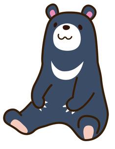 熊の写真素材 [FYI00128841]