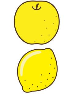梨・レモンの写真素材 [FYI00128854]