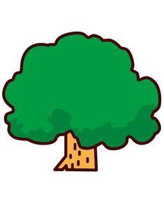 木の写真素材 [FYI00128861]