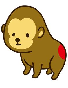 猿の写真素材 [FYI00128868]