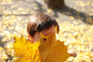紅葉の葉っぱお面の写真素材 [FYI00128961]