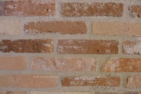 レンガ壁の写真素材 [FYI00128981]