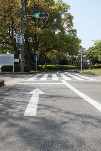 交通公園の矢印の写真素材 [FYI00131208]