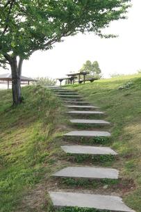 公園の階段の写真素材 [FYI00131284]