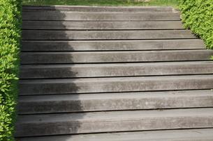 木の階段の写真素材 [FYI00131289]