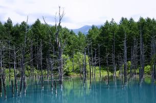 青い池2の素材 [FYI00131467]