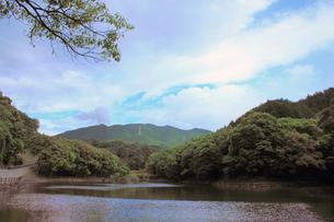 上谷池からみた紫尾の山の素材 [FYI00131878]