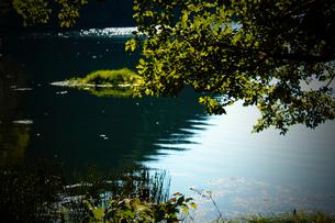 湖の素材 [FYI00132749]