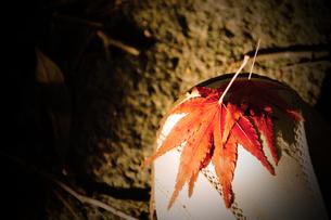 靴に貼りついたモミジの葉っぱの写真素材 [FYI00132791]