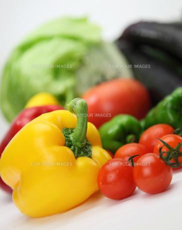野菜の写真素材 [FYI00133153]
