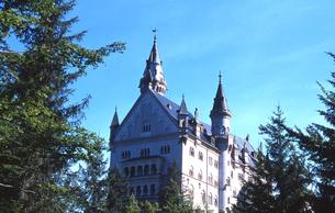 木立からのぞむノイシュバンシュタイン城の写真素材 [FYI00133443]
