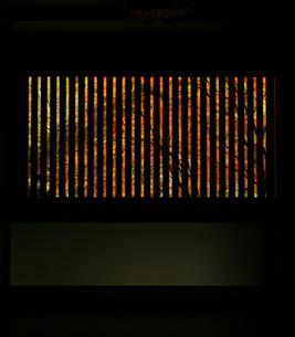 格子窓からのぞく紅葉の写真素材 [FYI00133635]