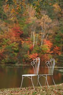 紅葉の湖畔と洋風の椅子の写真素材 [FYI00133647]