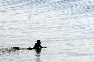 サーフィンをする女性の写真素材 [FYI00133690]